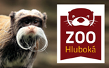ZOO Hlubok